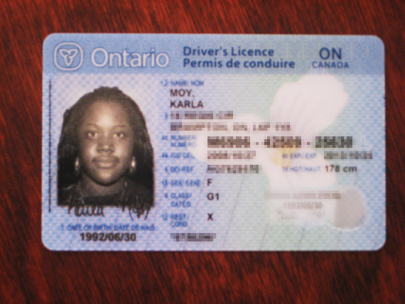 mexican drivers license in ontario